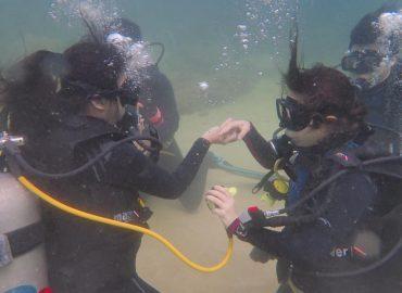 Borneo Dive Network, Sarawak