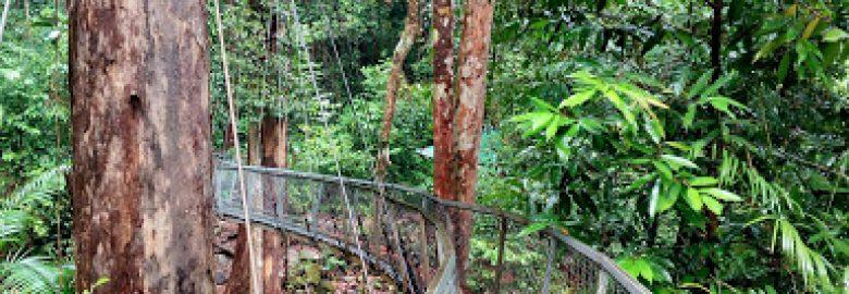 Taman Negara Santubong, Sarawak